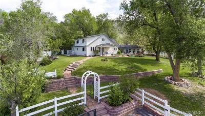 Lyons Single Family Home Active: 208 Seward Street