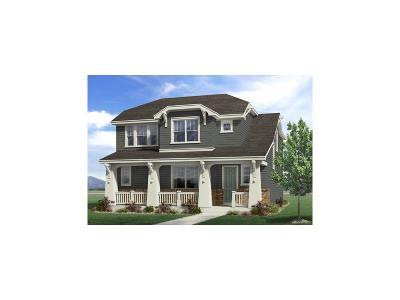 Longmont Single Family Home Active: 711 Summer Hawk Drive
