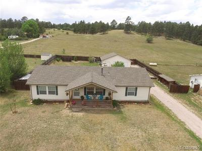 Elbert County Single Family Home Active: 23803 Broadway Street