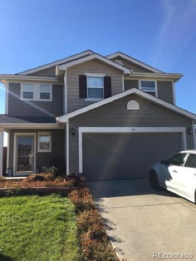 Weld County Single Family Home Active: 797 Canyon Lane