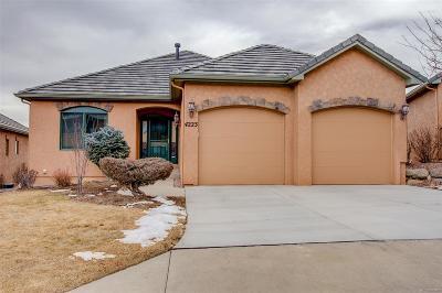 Colorado Springs Single Family Home Active: 4223 Star Vista Court