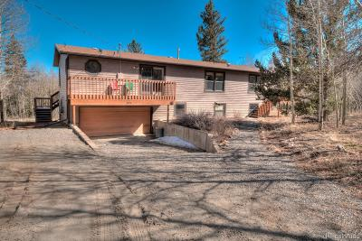 Fairplay Single Family Home Under Contract: 284 Lamb Mountain Road