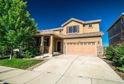 Colorado Springs Single Family Home Active: 1575 Diamond Rim Drive