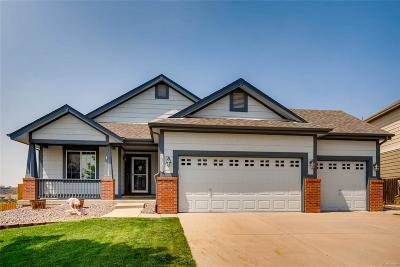 Parker CO Single Family Home Active: $525,000