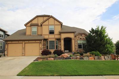 Castle Pines Single Family Home Under Contract: 7089 Winter Ridge Place
