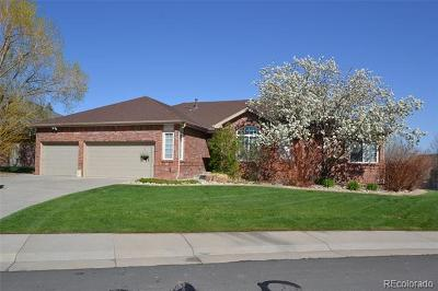 Arvada Single Family Home Active: 5674 Fig Way