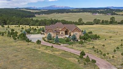 Douglas County Single Family Home Active: 10326 Red Cloud Trail