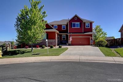 Castle Rock Single Family Home Active: 2740 Cache Creek Point