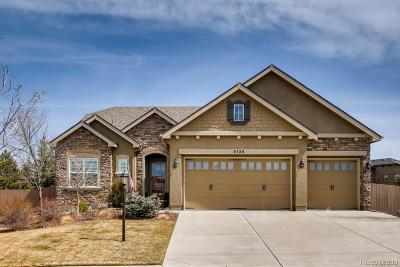 Briargate Single Family Home Under Contract: 9135 Dome Rock Place