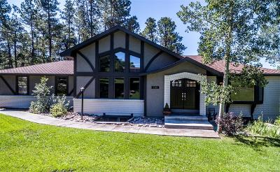 Monument Single Family Home Under Contract: 255 Woodmoor Drive