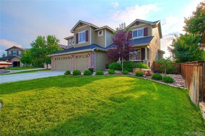 Highlands Ranch Single Family Home Active: 10313 Fairgate Way