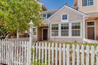 Longmont Single Family Home Active: 831 Snowberry Street
