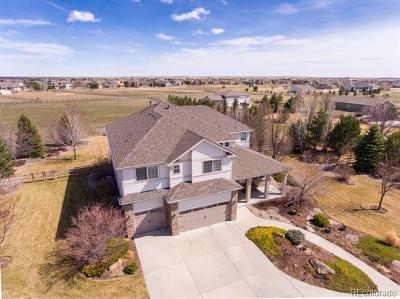 Windsor Single Family Home Under Contract: 4744 Meadowlark Drive
