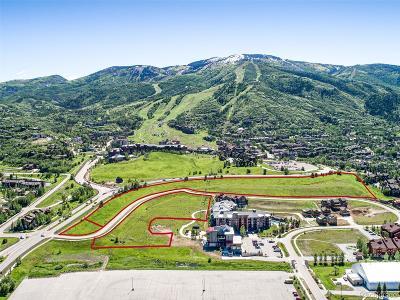 Residential Lots & Land Active: 1200 Mt Werner Road