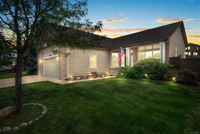 Meadows, The Meadows Single Family Home Under Contract: 4997 South Meadow Lark Drive