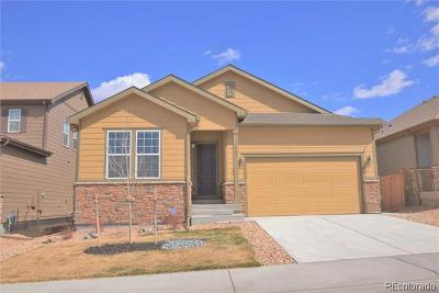 Castle Rock Single Family Home Active: 523 Tippen Place