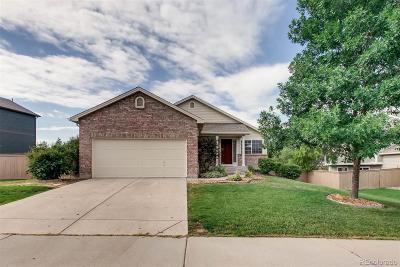 Castle Rock Single Family Home Under Contract: 6018 Randolph Avenue