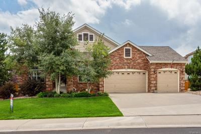 Sapphire Pointe Single Family Home Under Contract: 1060 Cryolite Place