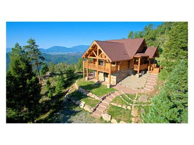 Conifer Single Family Home Under Contract: 13615 Pine Country Lane