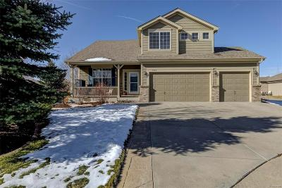 Castle Rock Single Family Home Active: 7395 Slate Court