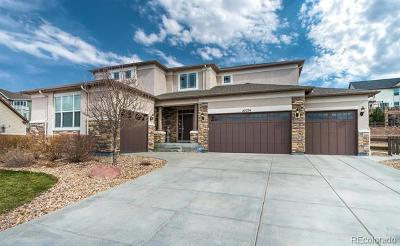 Arapahoe County Single Family Home Active: 27234 East Lakeview Place