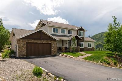 Steamboat Springs CO Single Family Home Active: $1,495,000