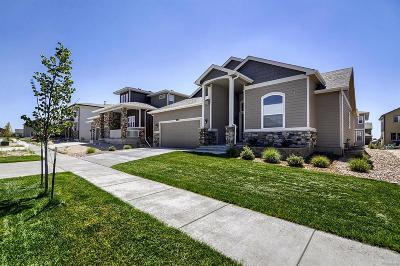 Colorado Springs Single Family Home Active: 8317 Misty Moon Drive