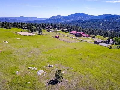 Evergreen Meadows Single Family Home Sold: 28886 Cragmont Drive