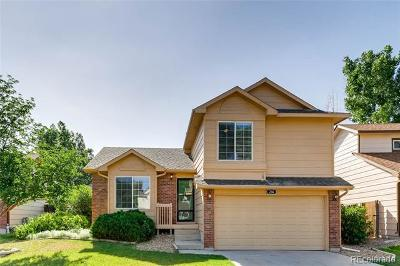 Castle Rock Single Family Home Active: 250 North Holcomb Circle