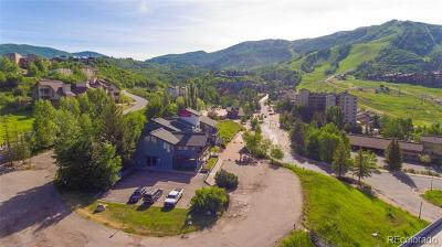 Steamboat Springs Residential Lots & Land Active: 1724 Ski Time Square Drive