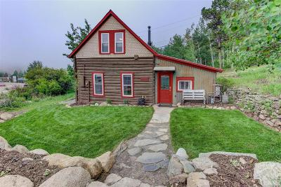 Nederland Single Family Home Active: 252 South Peak To Peak Highway