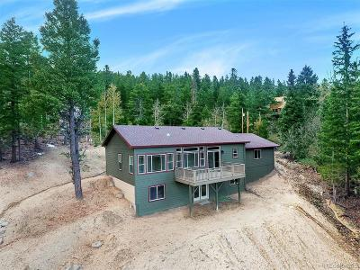 Evergreen Single Family Home Active: 1031 Lodgepole Drive