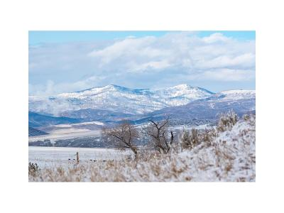 Steamboat Springs Residential Lots & Land Active: 25990 Rcr 43