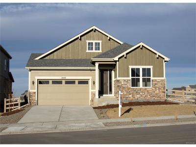 Littleton Single Family Home Active: 8039 Blue River Avenue