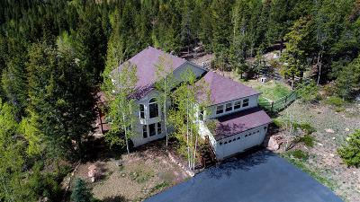 Conifer Single Family Home Under Contract: 32271 Steven Way