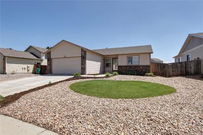 Weld County Single Family Home Active: 234 South Tamera Avenue