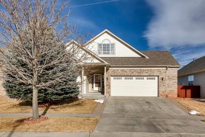 Colorado Springs Single Family Home Under Contract: 3530 Shady Rock Drive