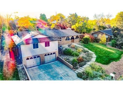 Lakewood Single Family Home Active: 2205 Willow Lane