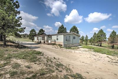 Kiowa CO Single Family Home Under Contract: $300,000