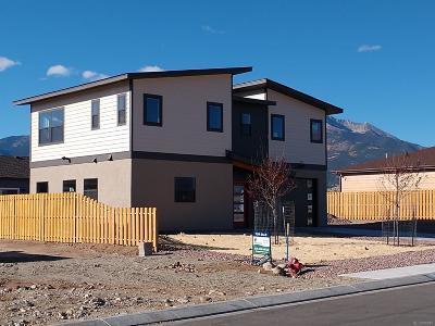 Buena Vista Single Family Home Active: 130 Grouse Road
