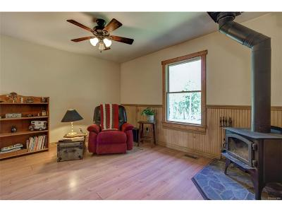 Conifer Single Family Home Active: 22656 Oehlmann Park Road