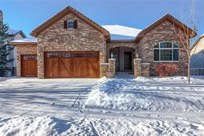 Arapahoe County Single Family Home Under Contract: 21242 East Saddle Rock Lane
