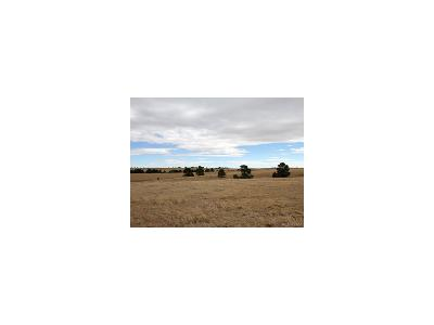 Residential Lots & Land Sold: Co Rd 150