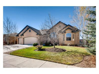 Monument Single Family Home Under Contract: 16284 Gold Creek Drive