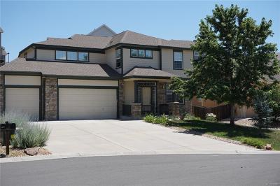 Crystal Valley, Crystal Valley Ranch Single Family Home Active: 4128 Astrion Court