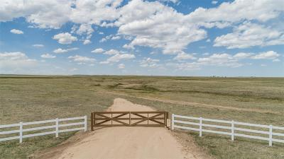 Falcon, Peyton Residential Lots & Land Active: 18320 Falcon Highway