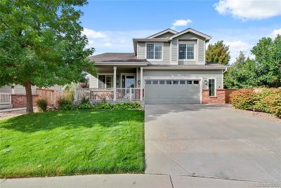 Parker Single Family Home Active: 11831 Trail View Lane