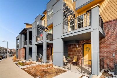 Broomfield Condo/Townhouse Under Contract: 11246 Uptown Avenue