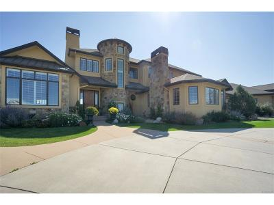 Parker Single Family Home Under Contract: 7718 Grande River Court