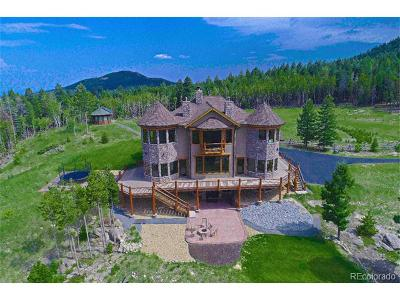 Evergreen Single Family Home Active: 26214 Grand Summit Trail
